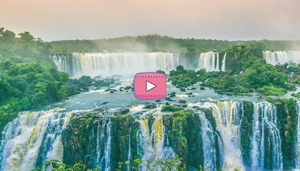 Путешествия натуралиста в Бразилию и Боливию